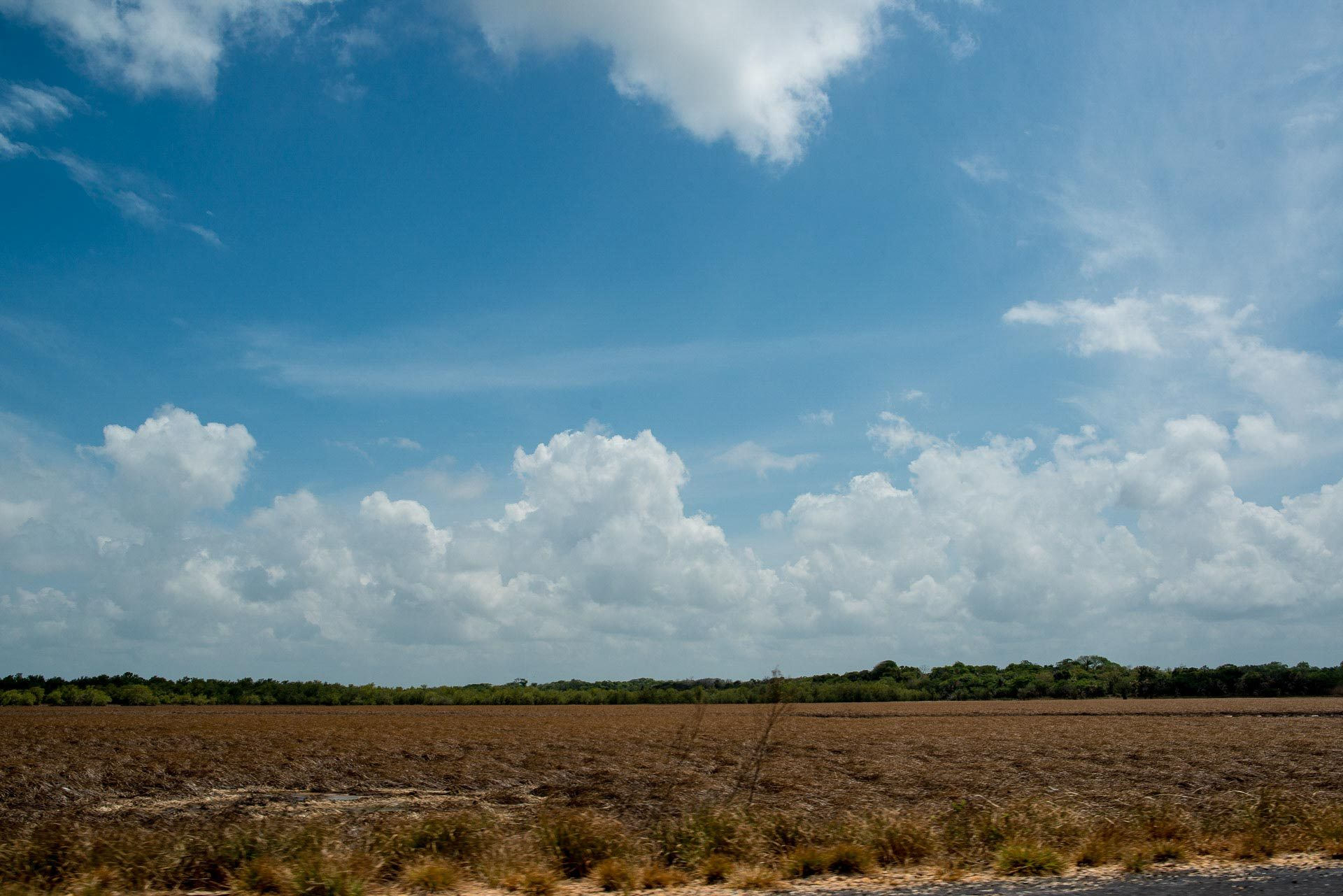Bragança - Pará