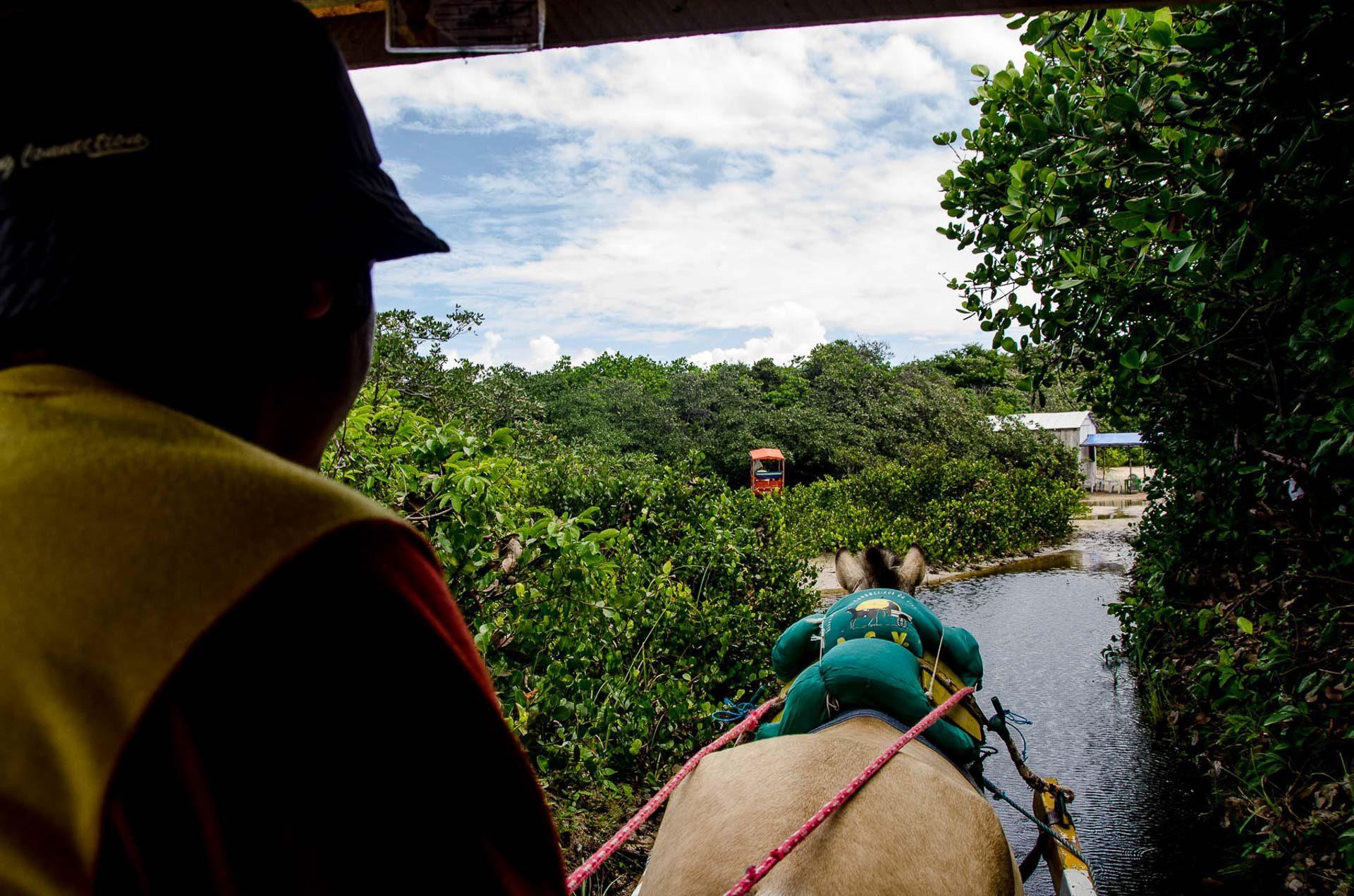 Caminho do Lago da Princesa - Algodoal