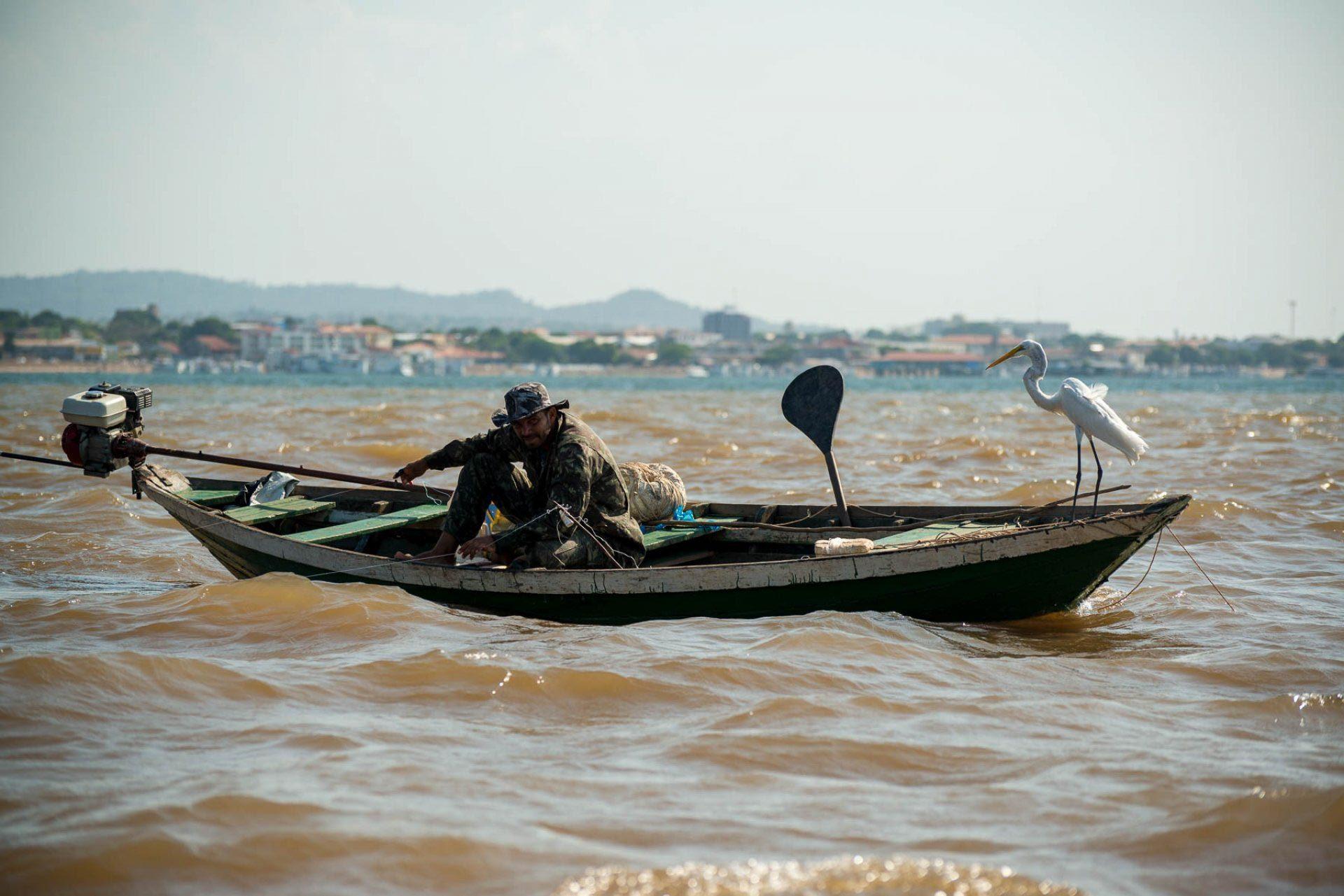 A garça sempre acompanha os pescadores na orla de Santarém