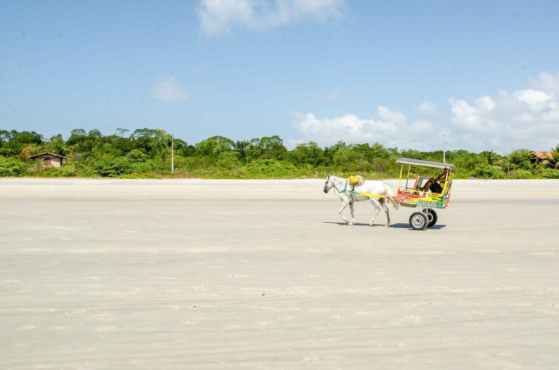 Ilha de Algodoal - Pará - Brasil