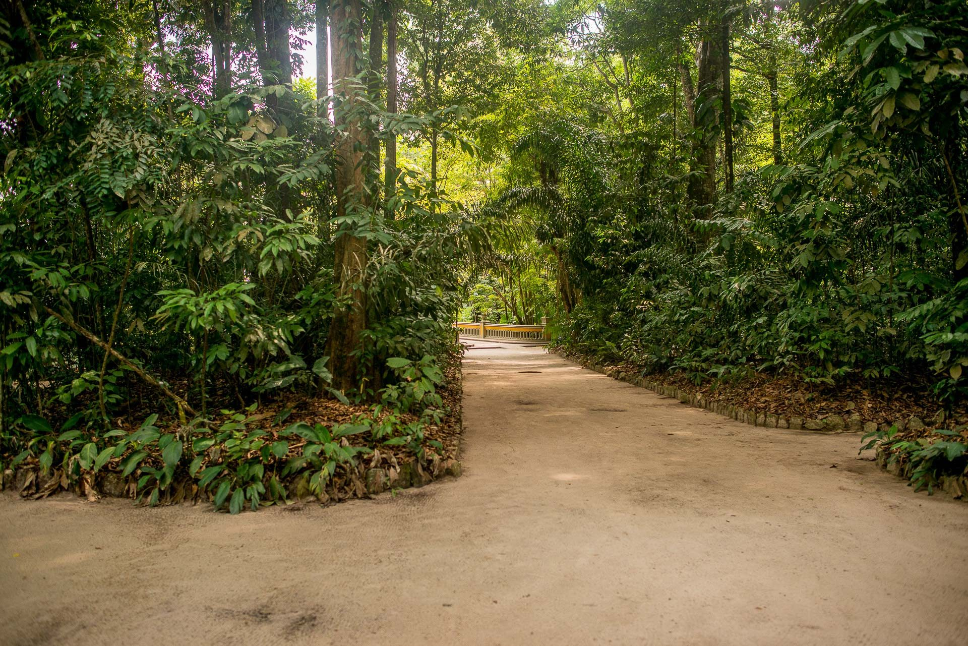Jardim Botânico Bosque Rodrigues Alves - Belém