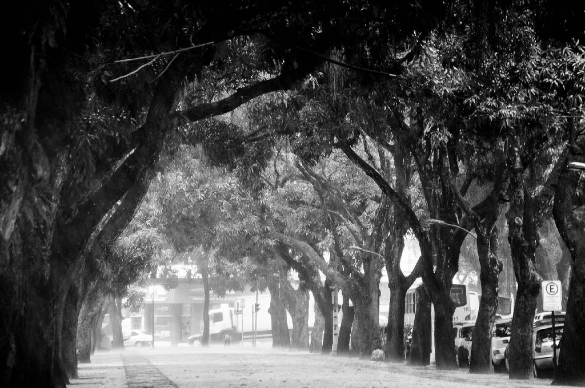 Praça da República - Belém