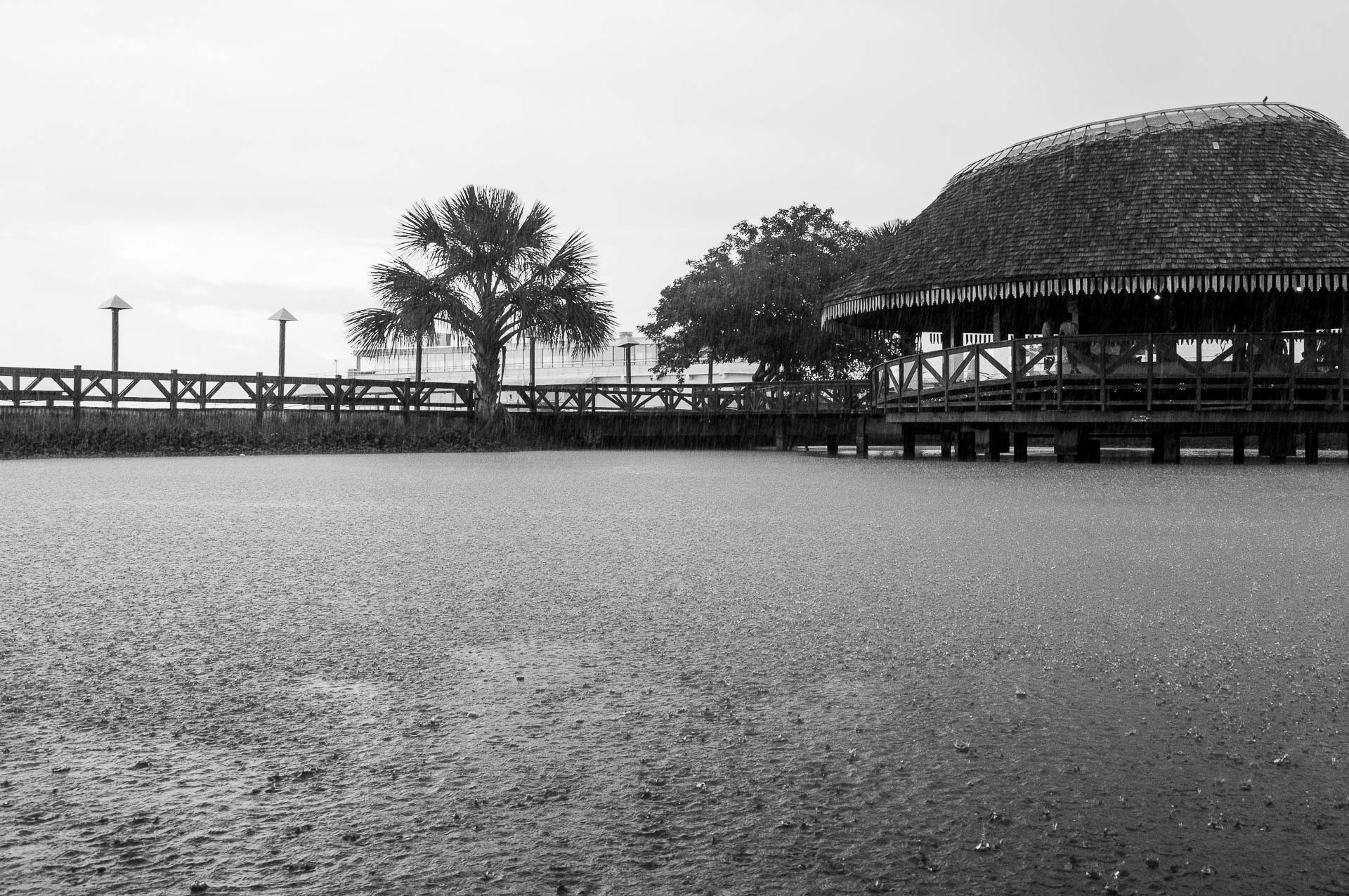 Ver o Rio - Belém
