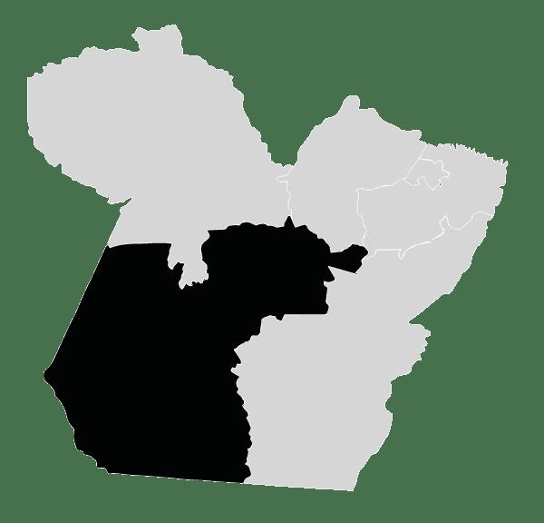 Sudoeste Paraense