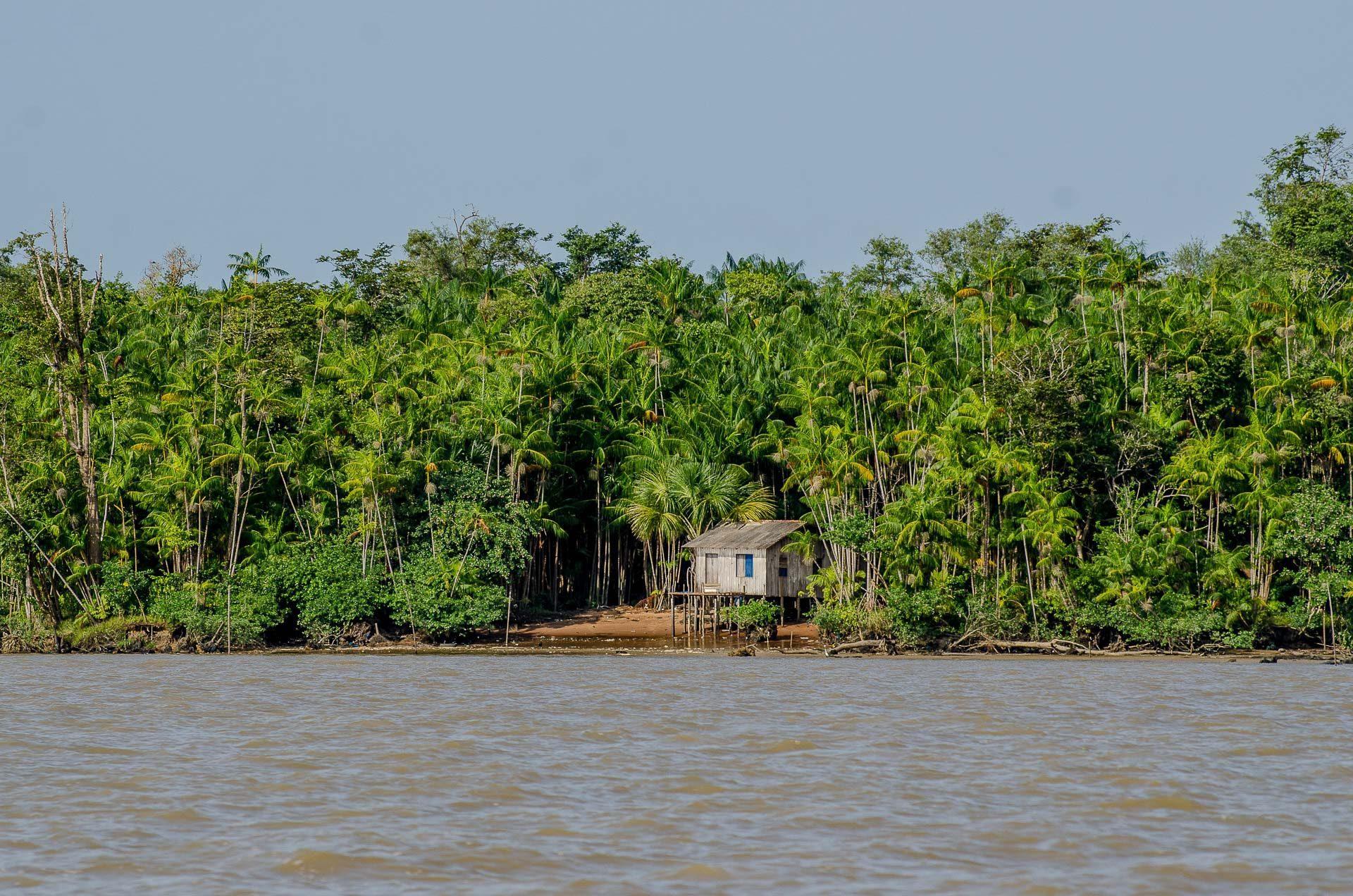 Ilha Jutuba - Belém