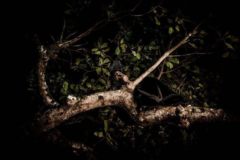 Lendas Amazônicas - Matinta Pereira