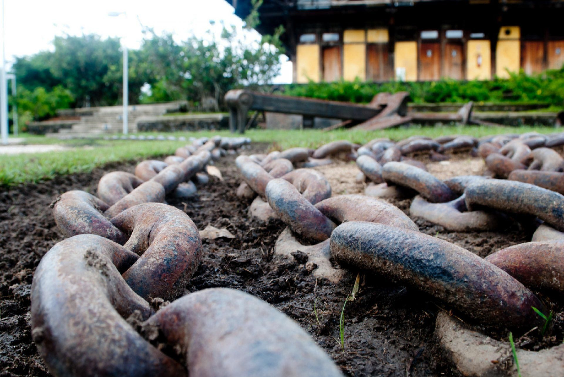Mangal das garças - Belém do Pará