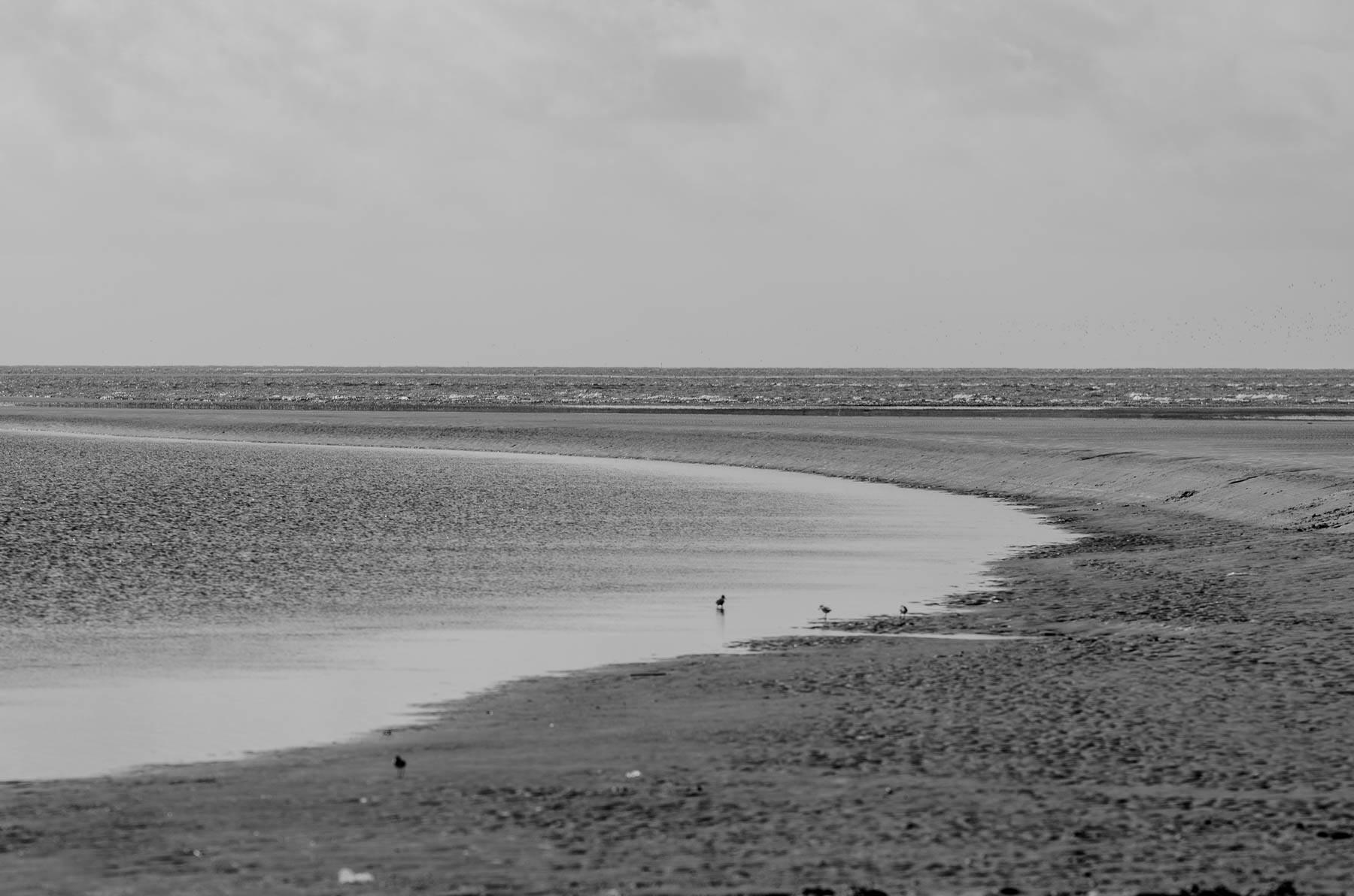 Praia do Crispim - Marudá - Pará