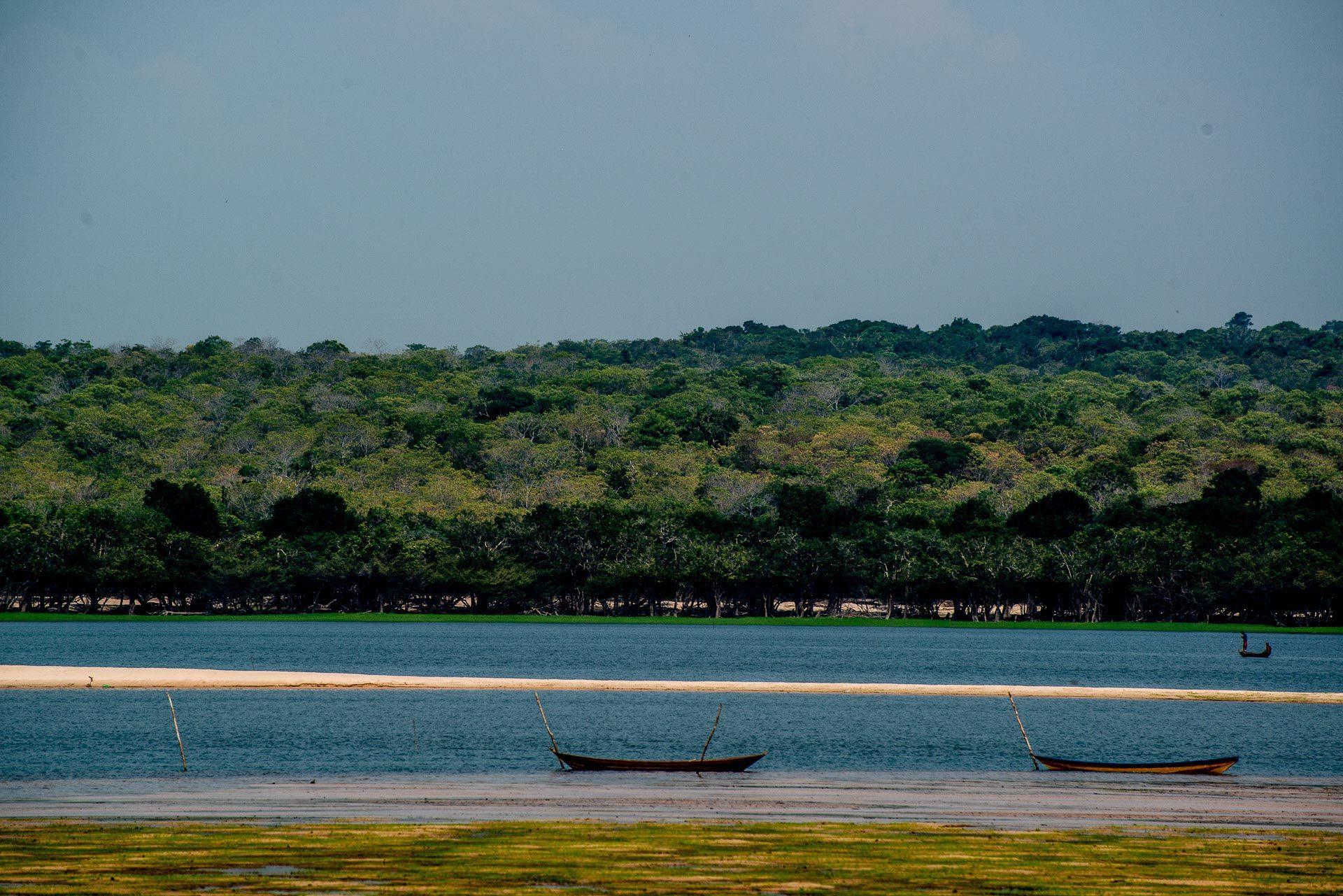Tapari - Santarém