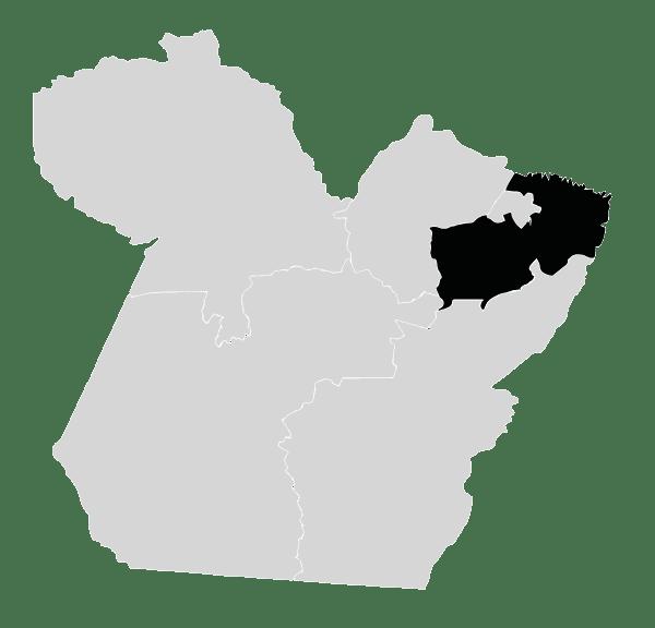 Nordeste Paraense